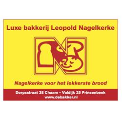 nagelkerke-250